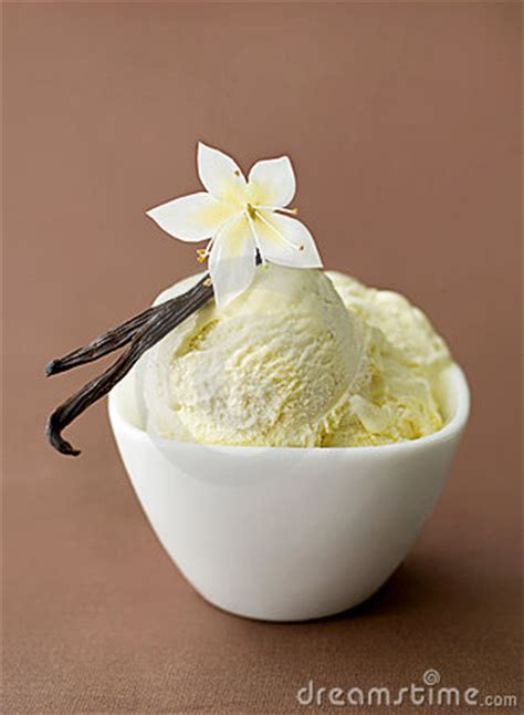 Vanilla On Ice-cream In A Bowl Royalty Free Stock Images