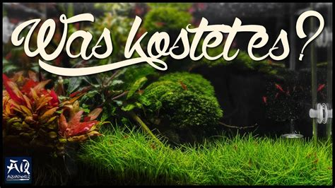 Was kostet Aquascaping? | AquaOwner - YouTube
